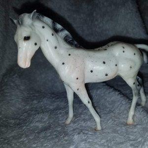Oreo the Pony